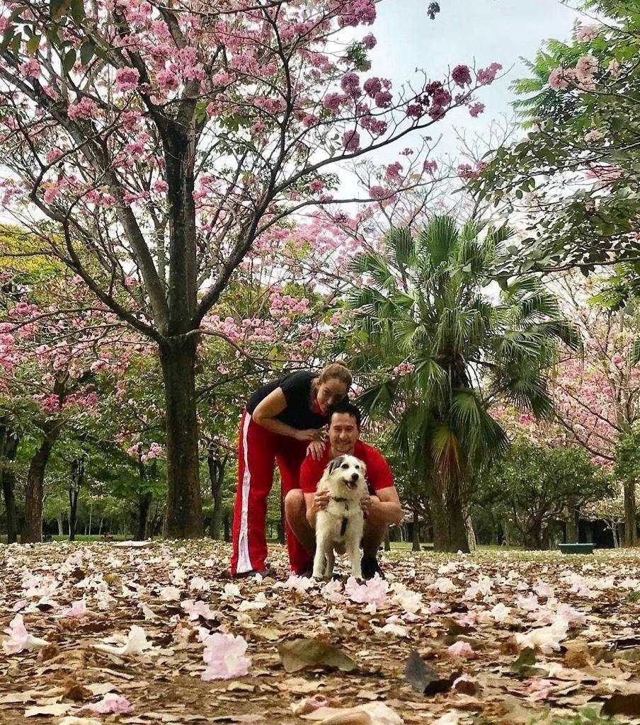 imagem de um casal e um cachorro no parque